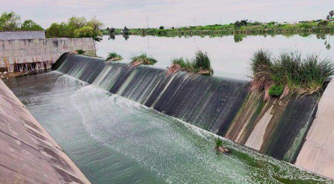 Tamaulipas: Agua contaminada mata al Laguito (El mañana)