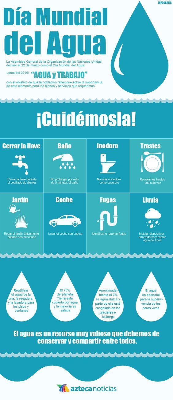 Día Mundial del Agua (Infografía)