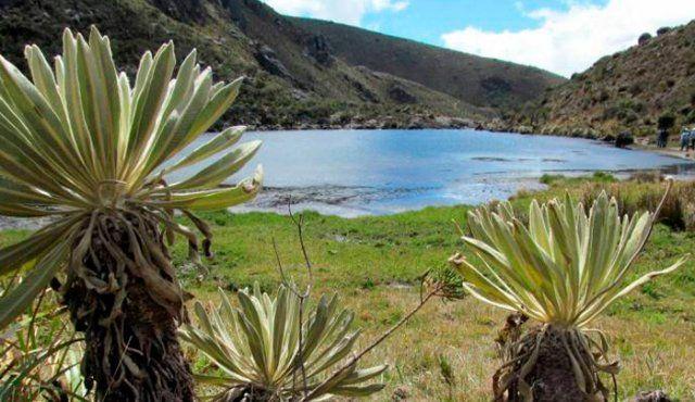 En Cúcuta también se vive el Día Mundial del Agua (La Opinión)