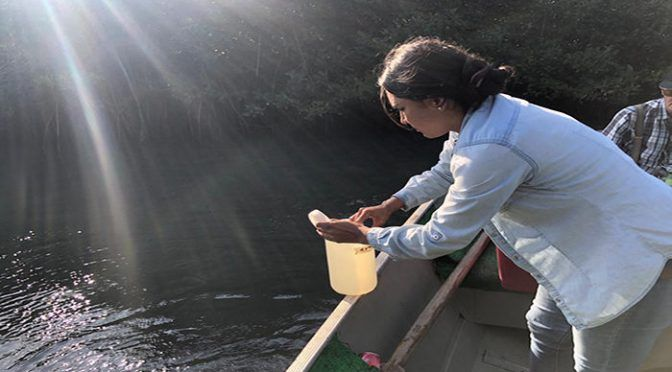 Jalisco: Por contaminación, cerrado el paso a playas cercanas al estero (Vallarta Independiente)