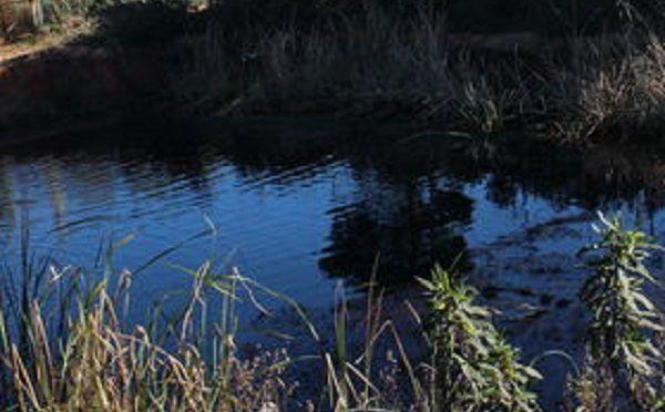 España: Robando el agua de todos (Ecoticias)