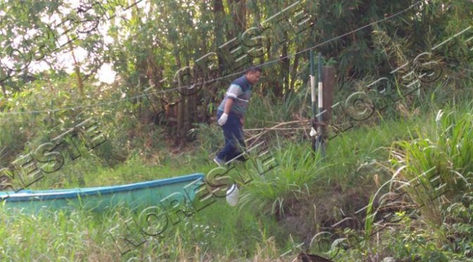 Veracruz: Limpian el río Tuxpan; está lleno de contaminantes (Noreste)