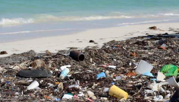 Yucatán: Agonizan por contaminación aguas ( La verdad)