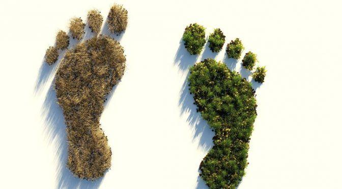 Madrid: Día de la Tierra: ¿Sabes calcular tu huella ecológica? (europafm)