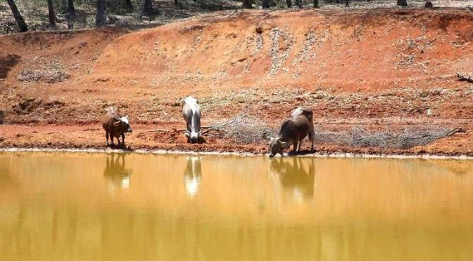 Querétaro: Buscan alternativas para retención de agua en presas (Diario de Querétaro)
