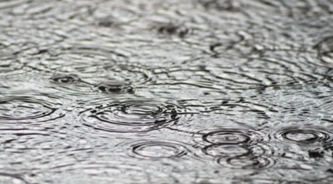 Yucatán: UADY promueve práctica ancestral maya para recolectar agua de lluvia (La Jornada Maya)
