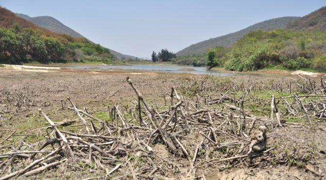 Oaxaca: Amenaza la sequía a poblaciones (El Imparcial)