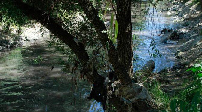 Carecen las Cholulas de plantas tratadoras ( El Sol de Puebla)