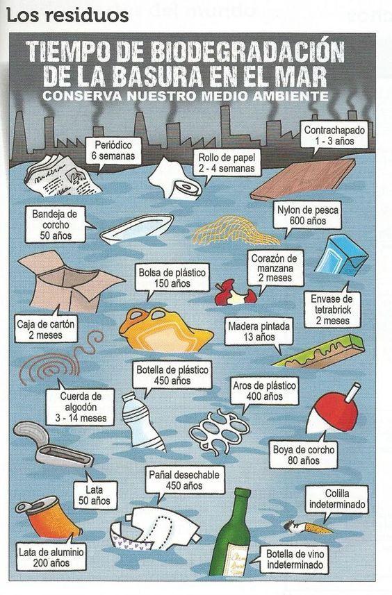 Tiempo de biodegradación de la basura en el mar. (Infografía)