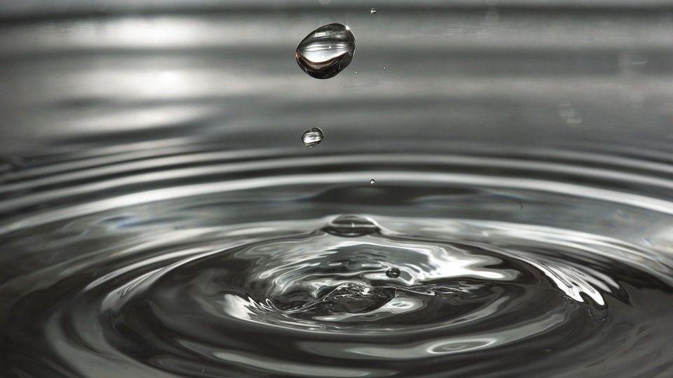 Los municipios con humedales se implicarán más en la gestión del agua (La Vanguardia)