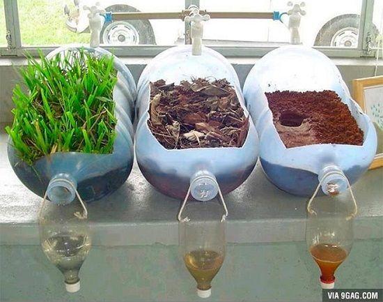 Agentes Naturales como Alternativa para el Tratamiento del Agua