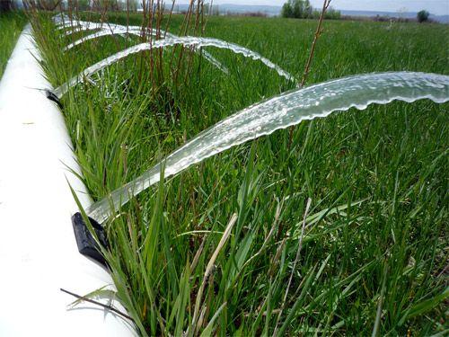 Tendencias del uso agrícola del agua en tres municipios del bajío michoacano