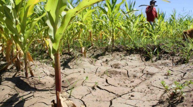 """México y el mundo sufren """"estrés hídrico"""" por sobrepoblación (La Razón)"""