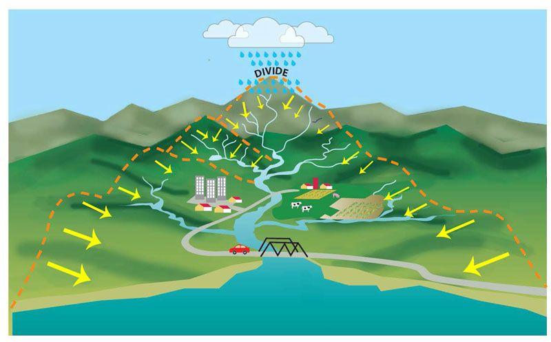 La cuenca (Infografía)