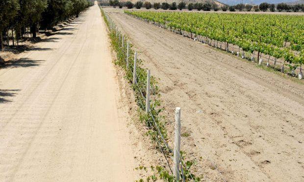 Baja California: Elevan hasta 20 pesos precio de agua tratada para viñedos (ZETA)