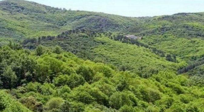 Estado de México: Ambientalistas de Coacalco solicitan que barranca se declare zona natural protegida (El Sol de Toluca)