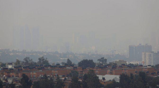 CdMx: AMLO advierte que el que afecte el medio ambiente, será castigado (MVS Noticias)
