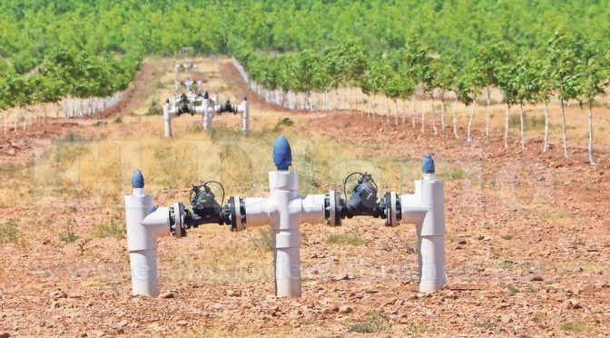 Chihuahua: JMAS no denuncia robo de agua (El Diario de Chihuahua)