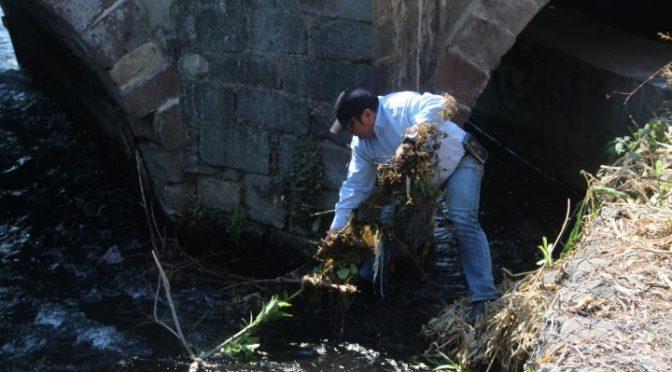 Michoacán: Organizan Jornadas de Limpieza del Río Cupatitzio (CDN)