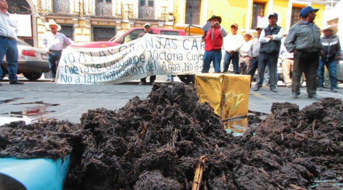 Puebla: Arrojan estiércol en el congreso en protesta contra rastro de granjas Carrol (La Jornada de Oriente)