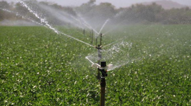 ONU: Reutilizar el agua: Una oportunidad ante los retos de la agricultura (aguasresiduales.info)