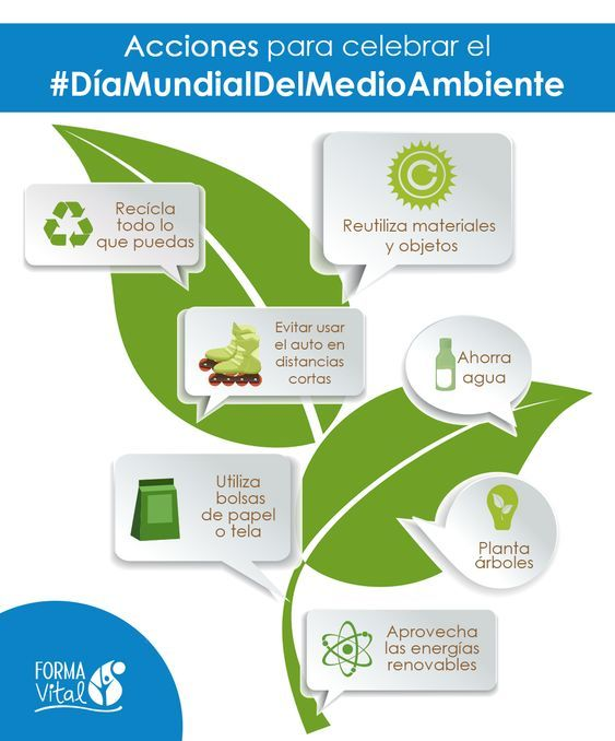 Acciones para celebrar el Día Mundial del Medio Ambiente (Infografía)