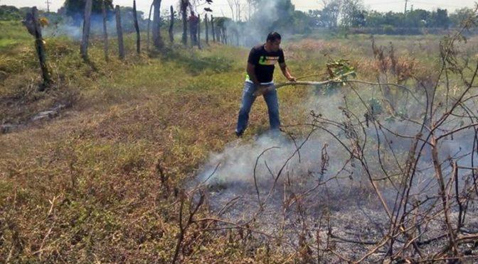 Tabasco: Proliferan incendios en Huimanguillo y carecen de agua (El Heraldo de Tabasco)