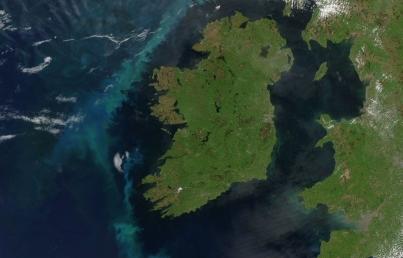 Disminuye productividad de fitoplancton en océano Atlántico Norte (Plano Informativo)