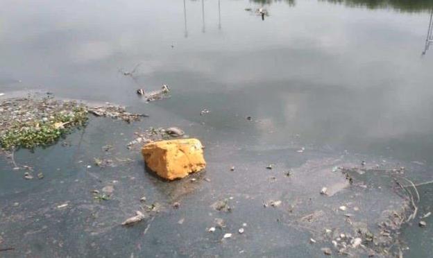 Tamaulipas: Queda en el olvido rescate de laguna (El Mañana)