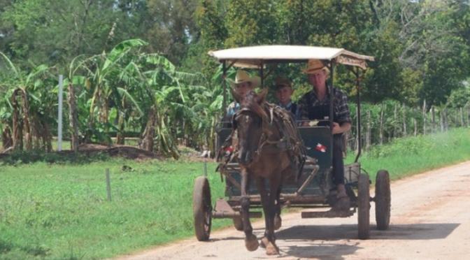 Campeche: Por falta de políticas públicas, Los Chenes enfrenta desabasto de agua (La Jornada Maya)