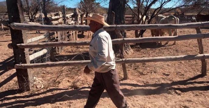 Coahuila: Aniquila a campesinos sequía y falta de recurso (La Voz)