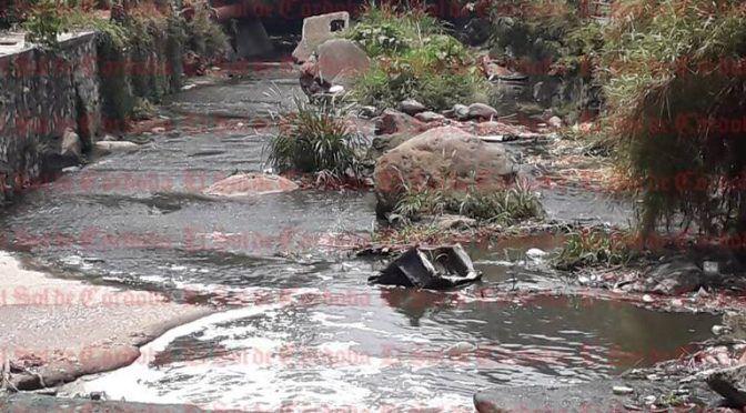 Veracruz: Existen 16 ríos contaminados en la zona centro del estado (El sol de Córdoba)
