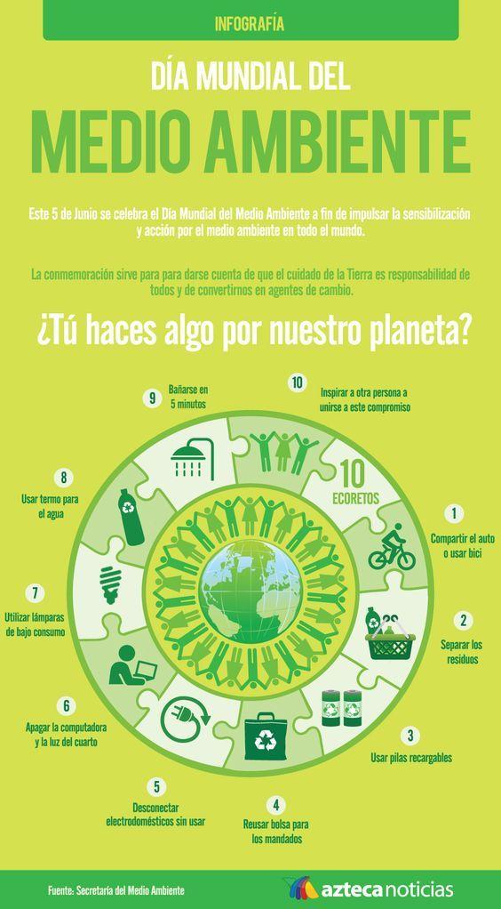 Día Mundial del Medio Ambiente (Infografía)