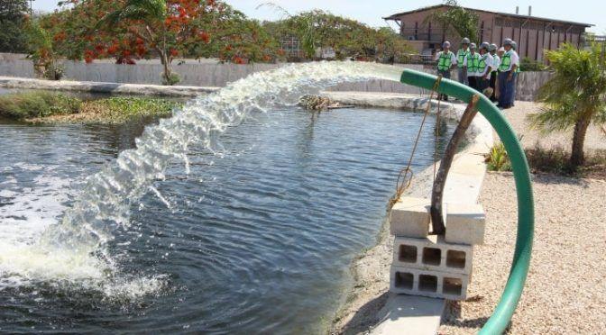 El manto acuífero de Yucatán está amenazado, advierte especialista (Diario de Yucatán)