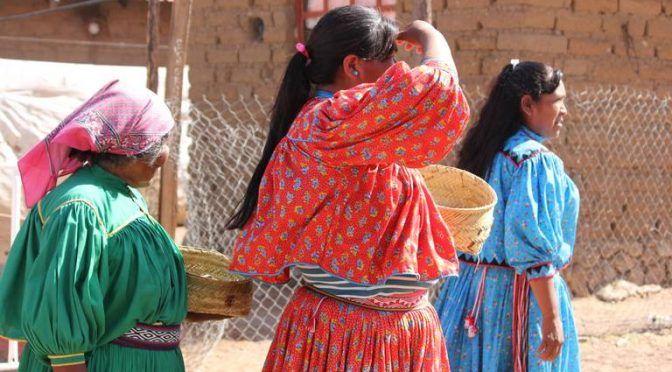 Chihuahua: Instalarán sistemas de cosecha de agua en la sierra (El Heraldo)