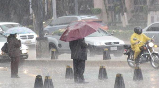 CDMX: Que es la lluvia ácida y qué daños puede causar (La opinión de poza rica)