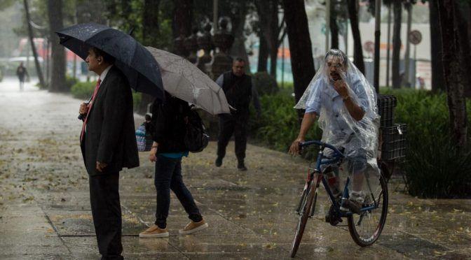 CDMX: así luce el agua de lluvia en la CDMX por contaminación, según una profesora de la UAM (Reporte Indigo)