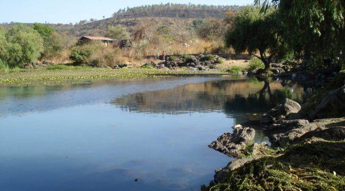 Michoacán: El manantial La Mantzita continúa en riesgo por la contaminación (La Jornada)
