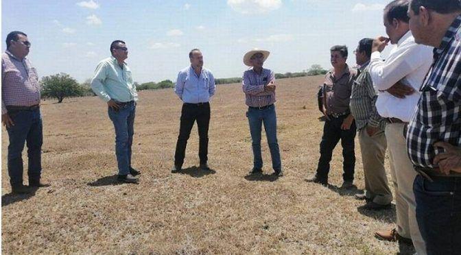 San Luis Potosí: Matehuala, al borde de la catástrofe por falta de agua (El Sol de San Luis)