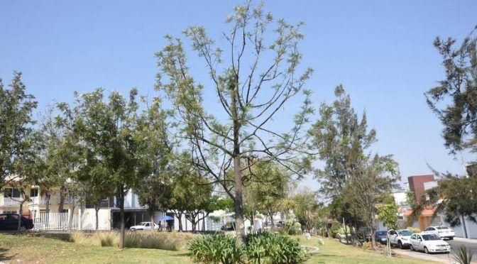 Querétaro: Trazarán líneas para abastecer agua tratada (Diario de Querétaro)