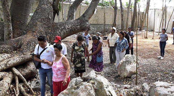 Yucatán: Ambientalistas trabajan en un parque ecológico (Turquesa News)