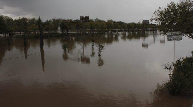 Mina de Grupo México contamina río en Zacatecas usado para sembradíos y consumo humano (Animal Político)