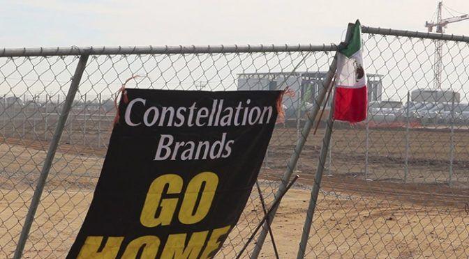 Baja California: Opacidad en otorgamiento de permisos para Constellation Brands: Colef (Monitor Económico)