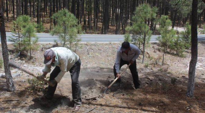 Chihuahua: obras de agua potable benefician a las 15 colonias de Guadalupe y Calvo (El Sol de Parral)
