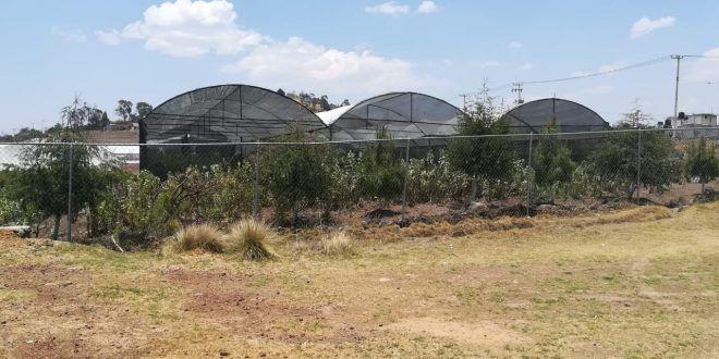 Hidalgo: Temen que aguas negras contaminen invernadero (criterio)