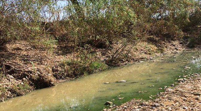 Oaxaca: Denuncian contaminación del río Mixteco en Huajuapan (Quadrantín)