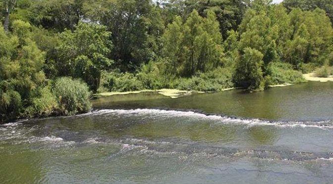 San Luis Potosí: Contaminación de ríos provoca cáncer: COCIHP (Pulso)