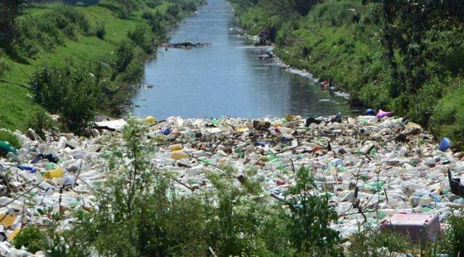 Capulhuac: Laguna de Agua Blanca, un oasis que se extingue (El Sol de Toluca)