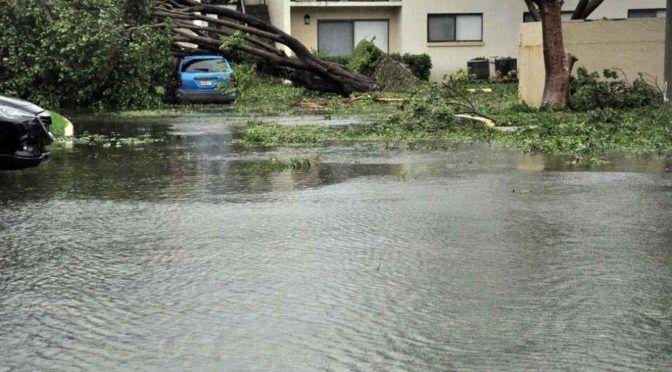 La subida del nivel del mar podría inundar las principales ciudades y desplazar a casi 200 millones (Telemundo)
