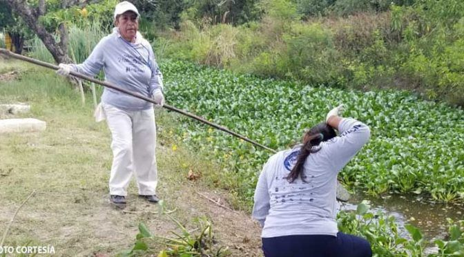 Yucatán: Sanearon 118 voluntarios parte de la laguna Manatí (Radio Fórmula)